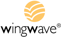 wingwave das Kurzeit-Coaching